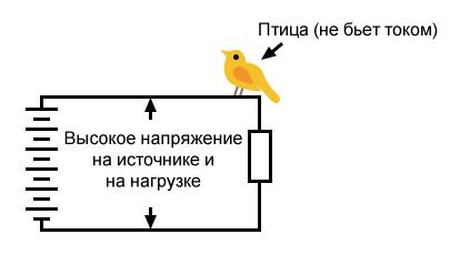 Рисунок 1 Отсутствие поражения птицы электрическим током при высоком напряжении